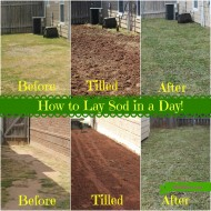 How to Sod Your Yard