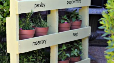 Make an Herb Garden with a Pallet