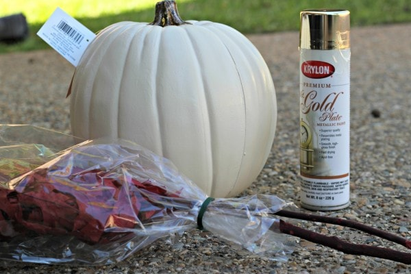 Harvest Pumpkin Supplies