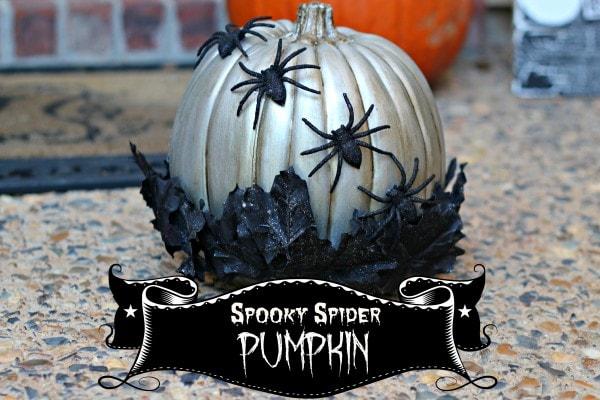 Spooky Spider Pumpkin1