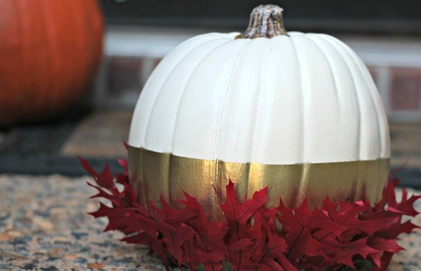 harvest pumpkin2