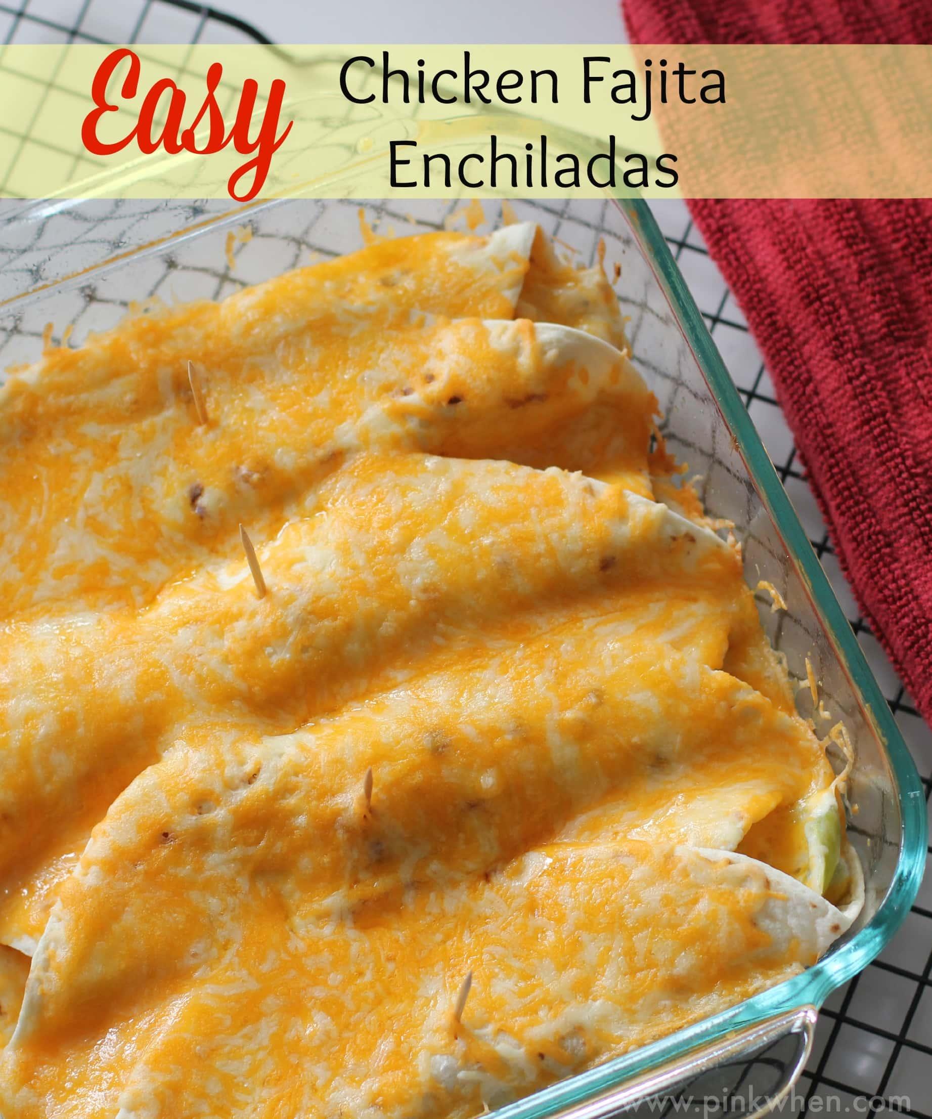 Easy Chicken Enchiladas Recipe — Dishmaps