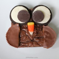 Brownie Owl Treats