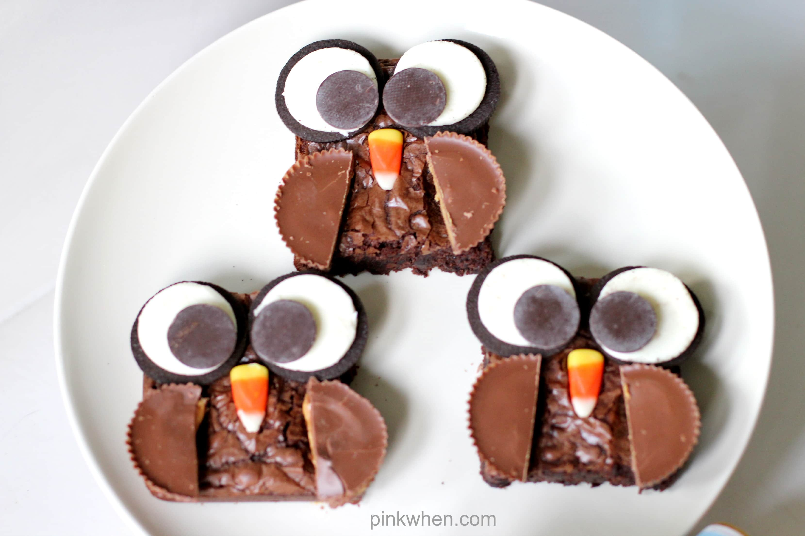 Super cute Brownie Owl Treat from PinkWhen.com