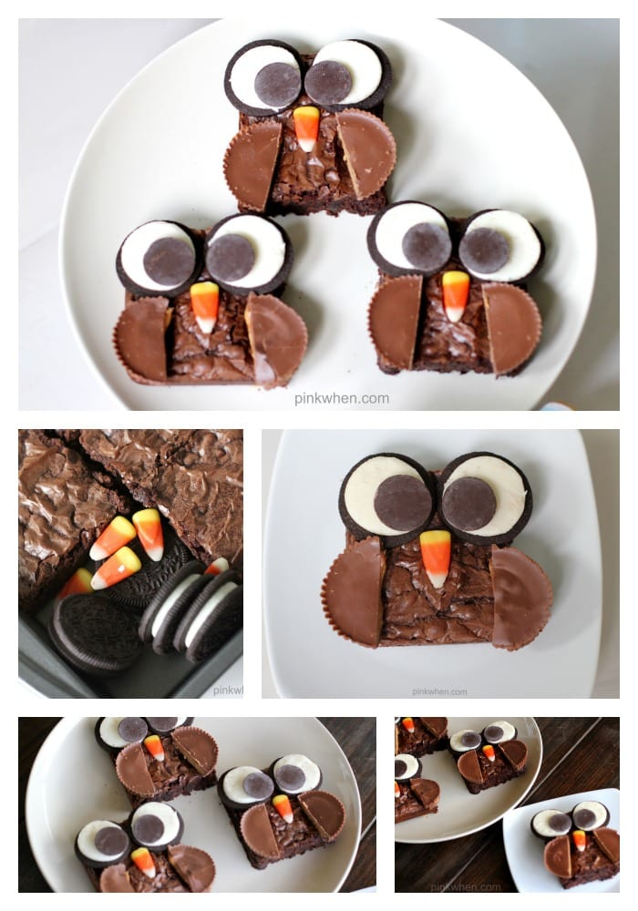 Delicious Brownie Owl Treats from PinkWhen.com 1