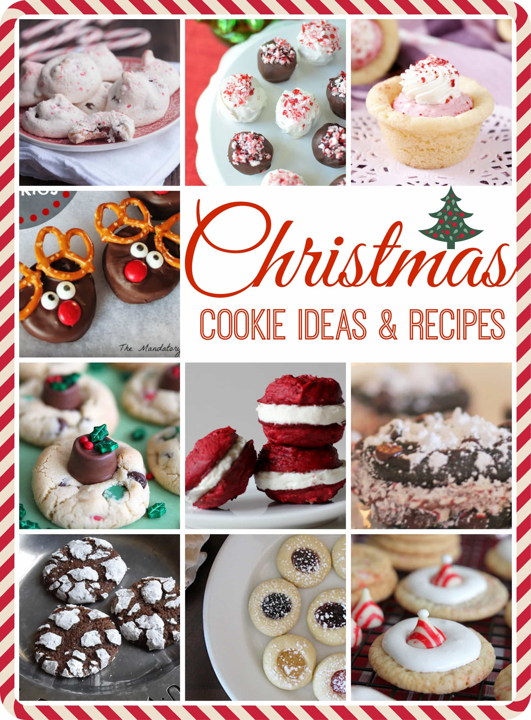 Christmas Cookie Ideas and Recipes for the holiday.  If you are looking for a delicious cookie recipe, you should find it in this roundup!