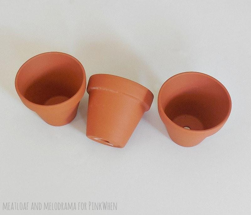 Rustic Succulent Pots