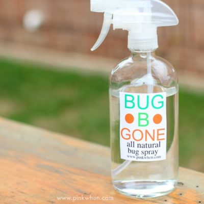 All Natural Bug Spray
