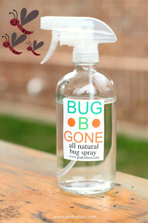 Bug Spray And Car Paint