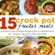 15 Freezer Crock Pot Meals (In Under 2 Hours & Under $180)