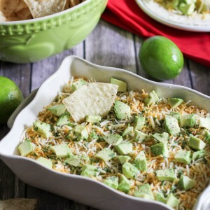 Not Your Normal Seven Layer Dip Recipe