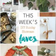 diy Sunday Showcase 11/7, & FAVES!