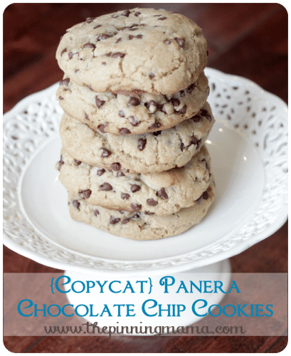 Copycat Panera Chocolate Chip Cookies are just one of the amazing chocolate chip cookie recipes you can find here.