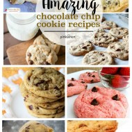 Amazing Chocolate Chip Cookie Recipes