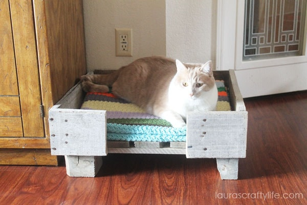 Amazingly awesome pallet projects pinkwhen for Homemade cat bed