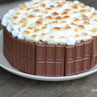 The Ultimate S'mores Cake Recipe + VIDEO