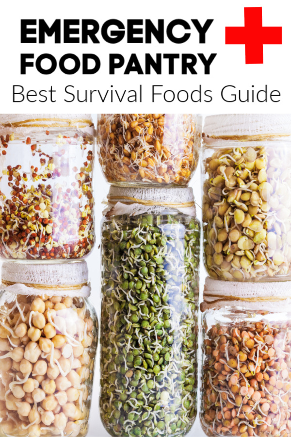 This long term food storage guide has a variety of foods for anyone who may be want to stock an emergency food pantry. These foods all last a year or more, so they have a long shelf life! Stock up your pantry today with the best survival foods. (Shopping list included!)