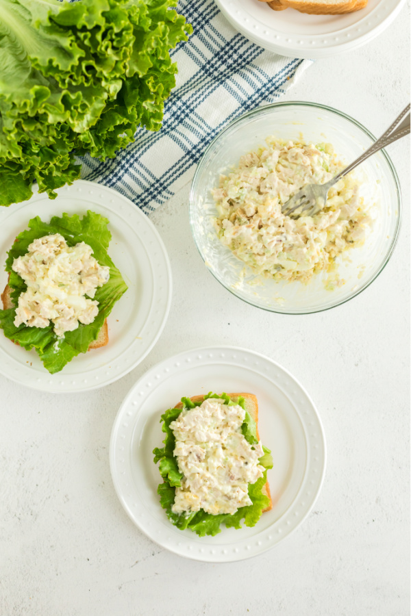 Chicken salad scooped onto bread with lettuce.