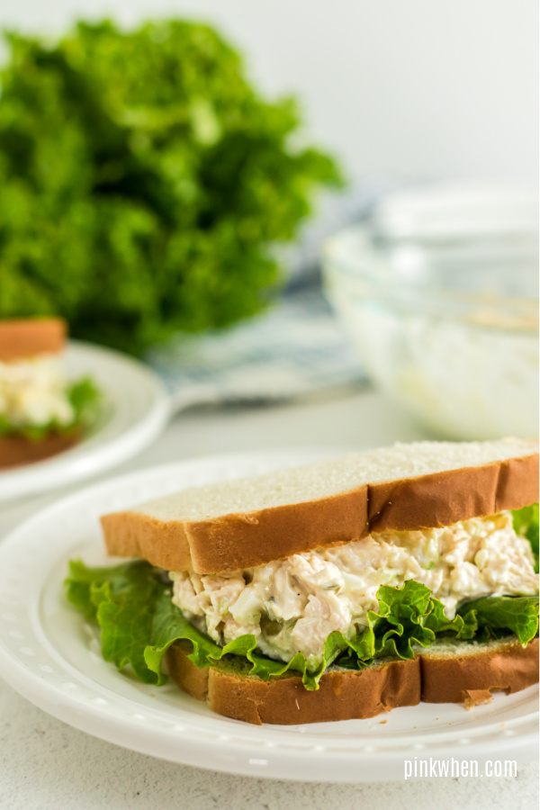 Chicken salad sandwich on a plate and ready to serve.