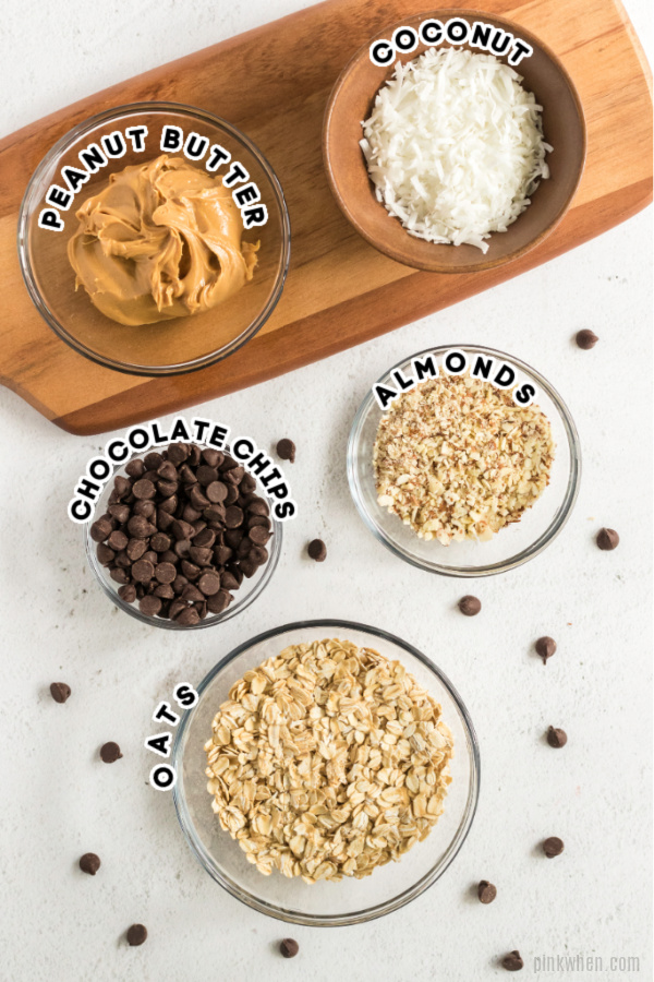 Ingredients needed for no bake protein balls.