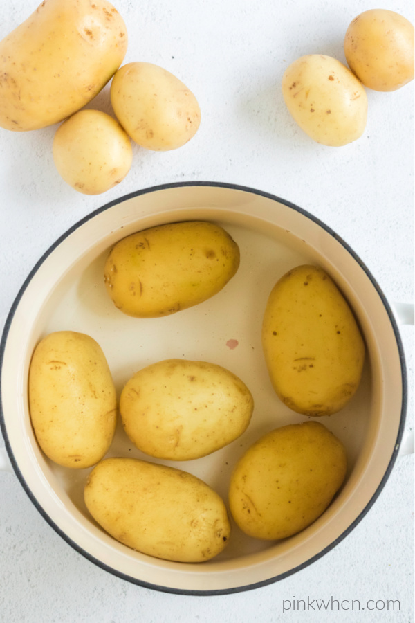 potatoes in a large pot ready to cook.