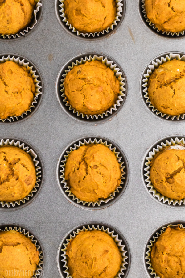 pumpkin muffins in a muffin tin.