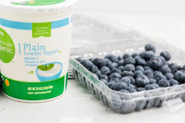 Plain yogurt and blueberries for yogurt bites.