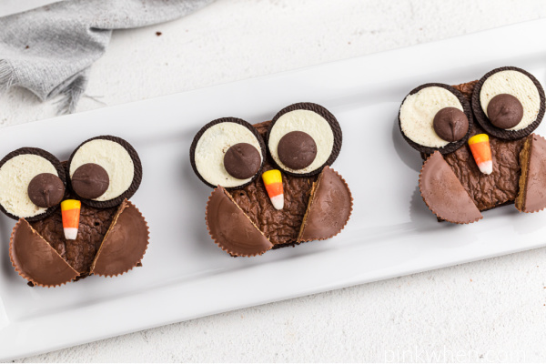 Brownies made into owls and served on a white plate.