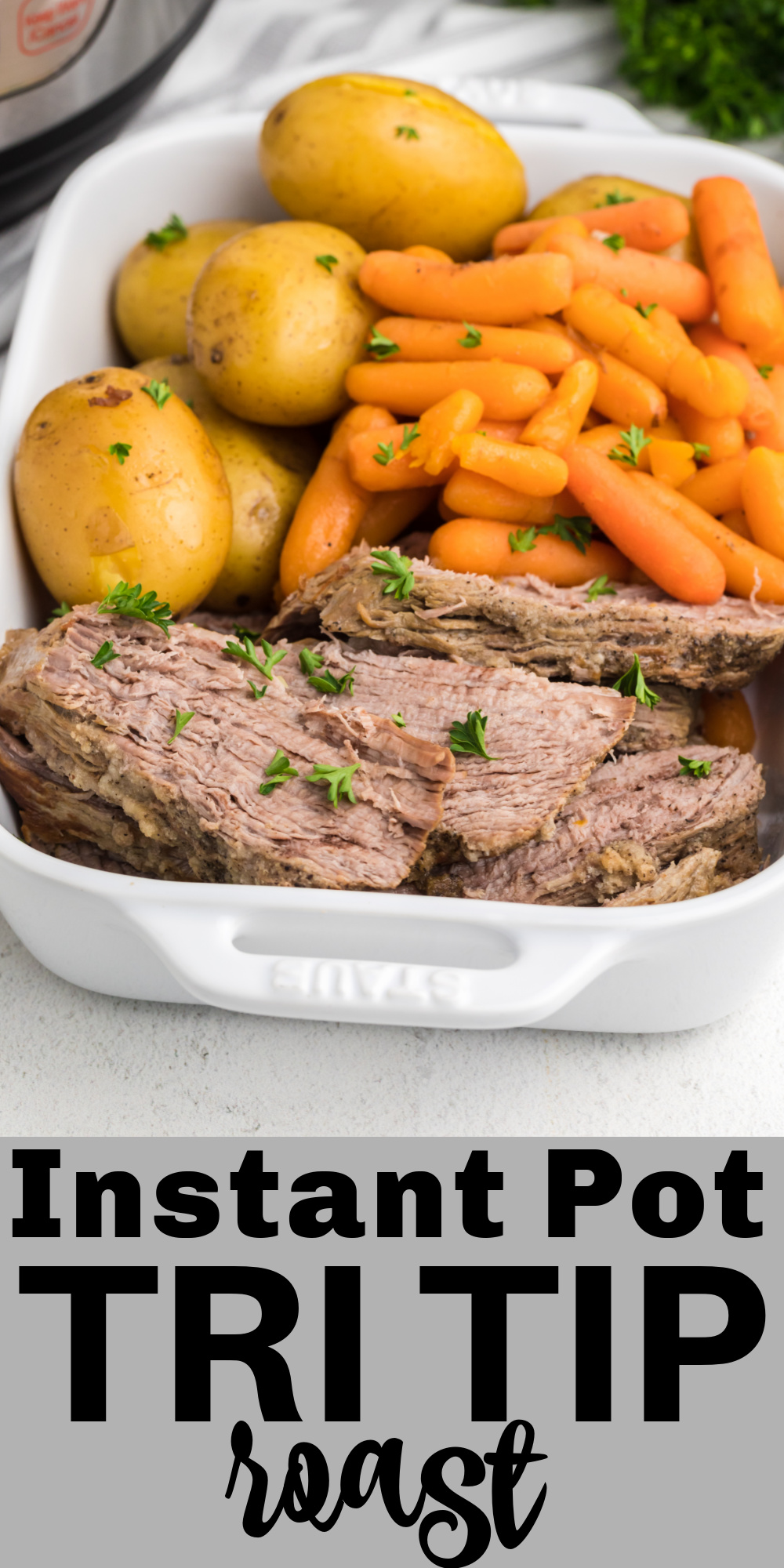 This Instant Pot Tri Tip recipe is made with vegetables and seasonings that will make this dish melt in your mouth. It's a hearty and filling dinner that's made quick and easy in the pressure cooker.